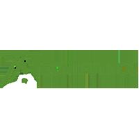 logo-head-olive